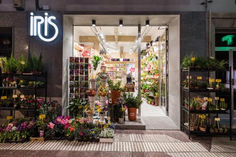 A13 Reforma de floristería Logroño